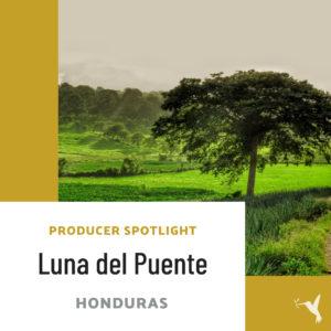 Producer's Spotlight: Luna del Puente